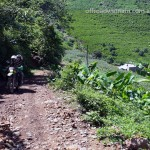 Mai Chau dirt bike tours